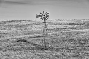 wordless-windy-wednesday